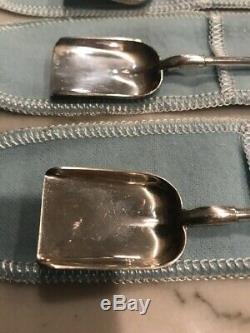 Tiffany & Co En Argent Sterling Iced Tea Pelle Cuillère Agitateur Paille Ensemble De (6) Monnaie